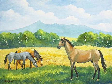 Wild horses by Jean Pierre Bergoeing