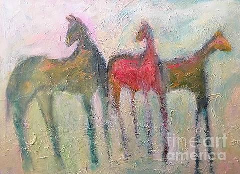 Wild horses by Mark Macko