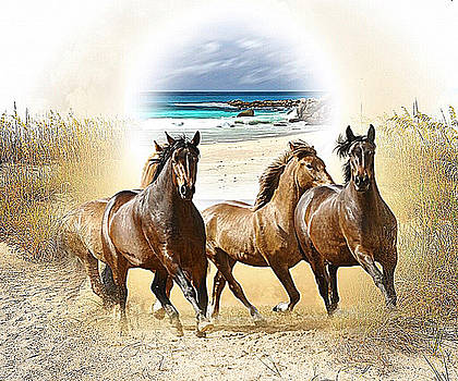 Wild Horses On The Beach by Clive Littin
