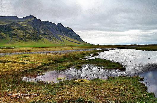 Wild Iceland by Jean-Louis Delhaye