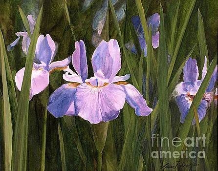 Wild Iris by Laurie Rohner