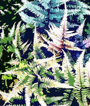 Wild Jungle by Uma Gokhale