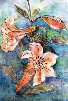 Wild lily by Hedwig Pen