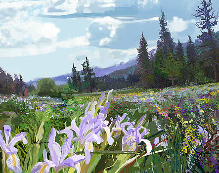 Wild Meadow by Brad Burns