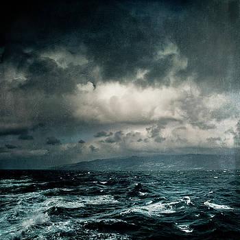 Wild Ocean by Dirk Wuestenhagen