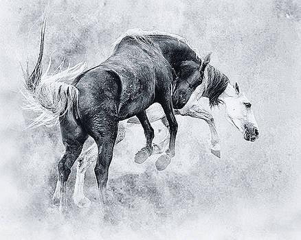 Wild Ones by Ron  McGinnis