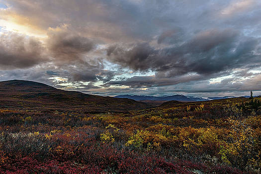 Wild Places Vista by Ron Day