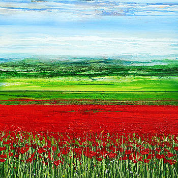 Wild Poppies Corbridge northumberland 2009 by Mike   Bell