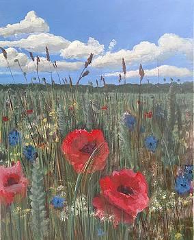 Wild Poppies of Vadstena by John Prenderville