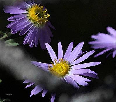 Wild Purple Daisies by Gretchen Wrede