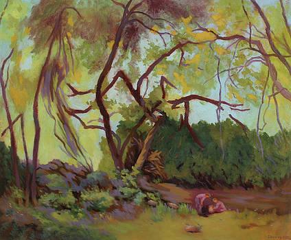 Wild Rabbit Woods by Bruce Zboray