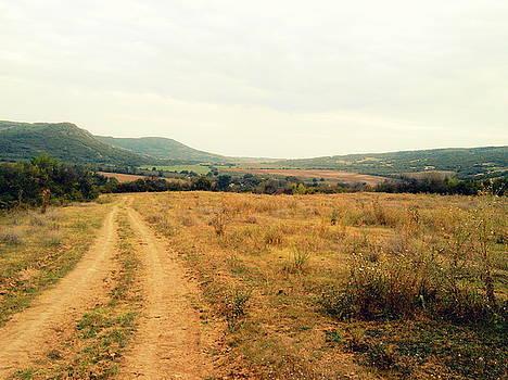 Wild road effect  by Aleksandra Savova