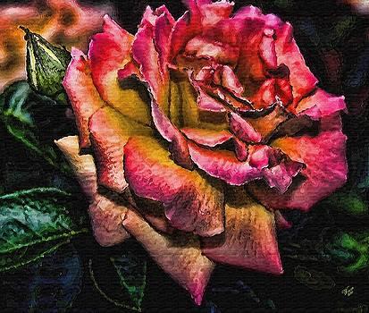 Wild Rose by John Winner
