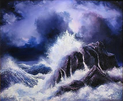 Wild Sea by John Cocoris