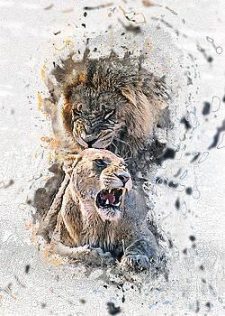 Wild by Sergey Korotkov