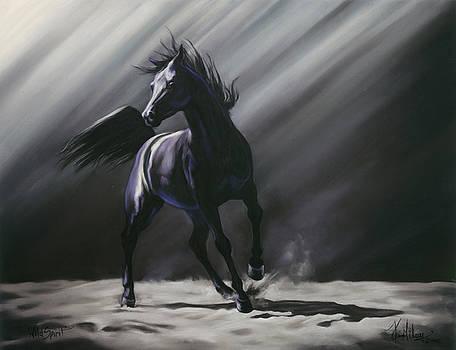 Wild Spirit by Kim McElroy
