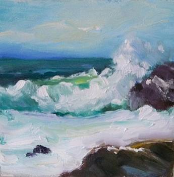 Wild Surf by Susan Jenkins