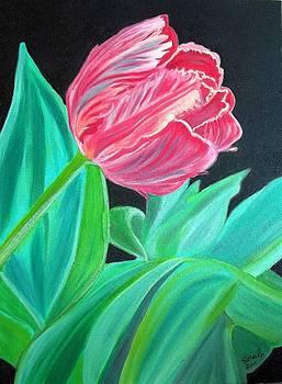 Wild Tulip by Soheila Madani