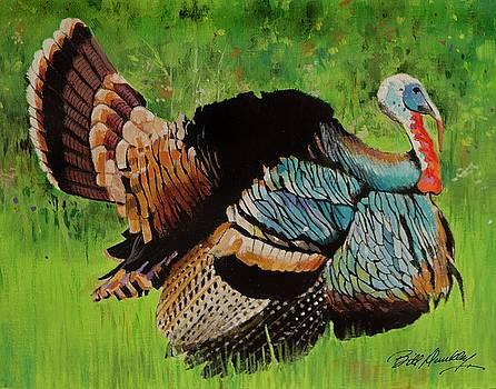 Wild Turkey by Bill Dunkley
