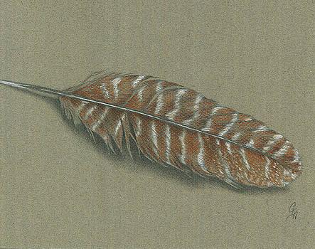 Christel Huttar - Wild Turkey Feather