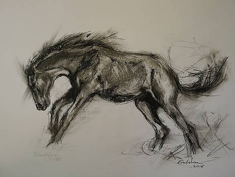 Bucking by Veronica Coulston
