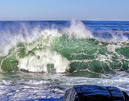 Wild Waves by Elaine Somers