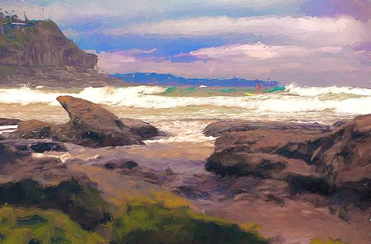 Wild Whale Beach by Chris  Hood