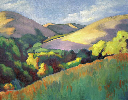 Wildcat Hillside Late Afternoon by Linda Ruiz-Lozito