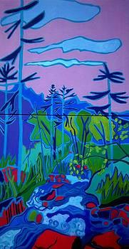 Wildcat River Jackson NH by Debra Bretton Robinson