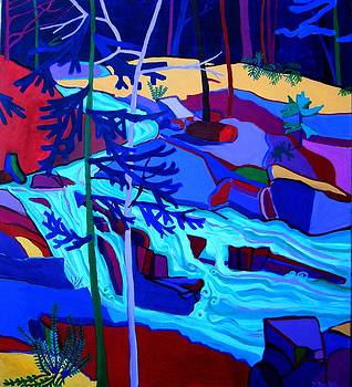 Wildcat River Waterfall Jackson NH by Debra Bretton Robinson
