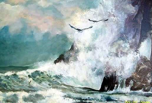 Wildcoast Seas by Estelle Hartley