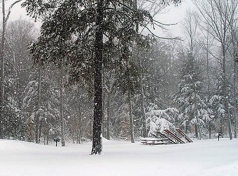 Wilderness State Park Winter Wonderland by Scott Heister