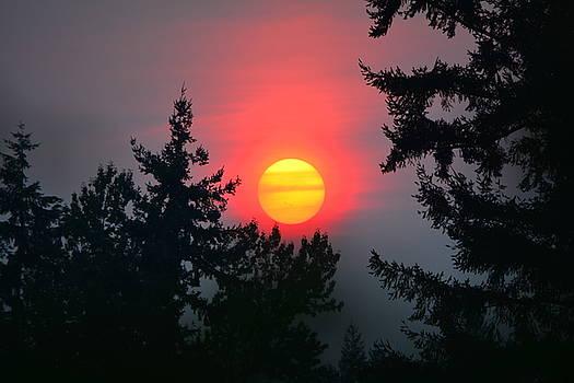 Theresa Pausch - Wildfire Sunset