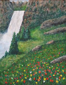 Wildflower and Waterfall by David Frankel