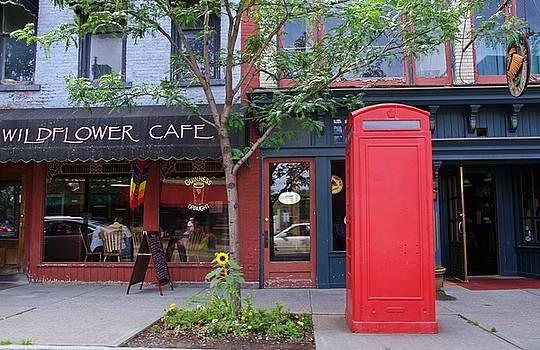 Wildflower Cafe by Stephanie Calhoun