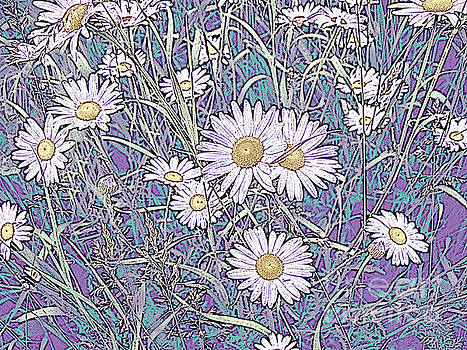 Wildflower Daisies in Field of Purple and Teal by Conni Schaftenaar