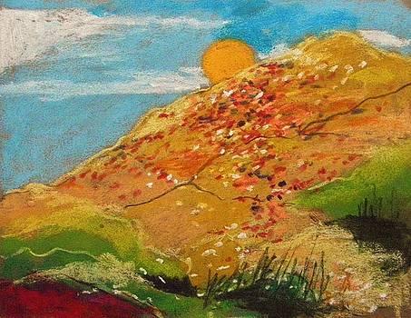 Wildflower Hillside by John Williams