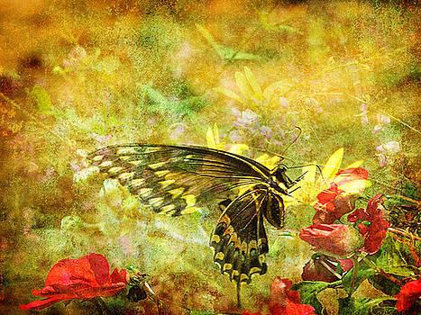 Wildflower Montage by Dottie Dees