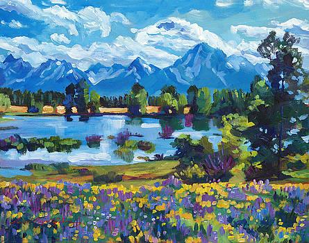 David Lloyd Glover - Wildflower Valley