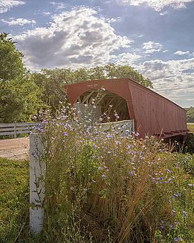 Susan Rissi Tregoning - Wildflowers at Hogback Bridge