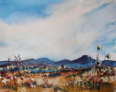 Wildflowers at the Black Pedernal by Laurie Salmela