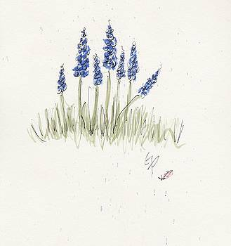 Wildflowers Blue by Gaynell Parker