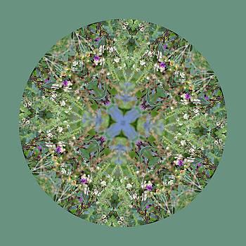 Wildflowers by the Water Mandala 2 by Keri Renee