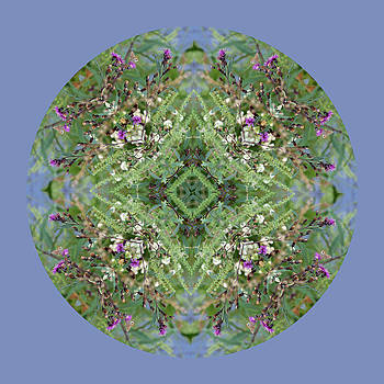 Wildflowers by the Water Mandala 3 by Keri Renee
