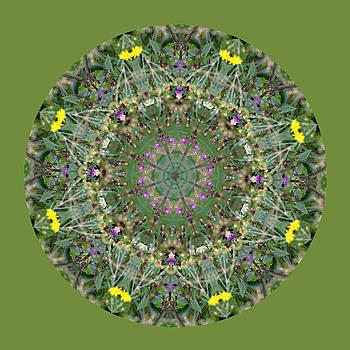 Wildflowers by the Water Mandala 4 by Keri Renee