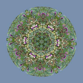 Wildflowers by the Water Mandala by Keri Renee