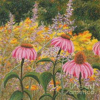 Wildflowers by Lisa Bliss Rush