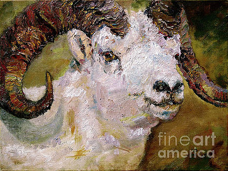 Wildlife Portrait Dall Sheep Ram by Ginette Callaway