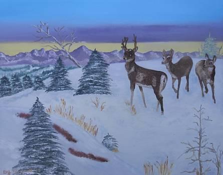 Wildlife Ridge by Dorothy Merritt