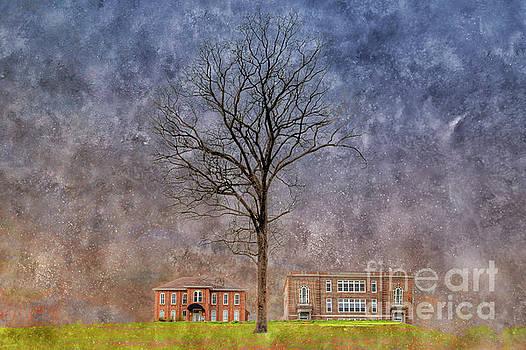 Larry Braun - Will Mayfield College Campus
